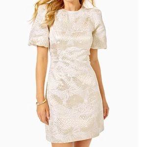 NWT Lilly Pulitzer Ailani dress Full Bloom